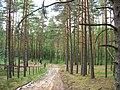 Garkalnes novads, Latvia - panoramio - SkyDreamerDB (1).jpg