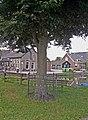 Gedenkboom Beatrix, Oostkade, Hekendorp.jpg