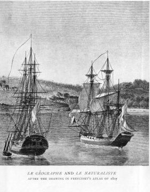 Anselme Riedlé - Corvettes Géographe and Naturaliste as illustrated in Freycinet's journal
