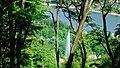 Geysirsprung des welthöchsten Kaltwassergeysirs auf der Halbinsel Namedyer Werth.jpg