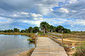 Gfp-texas-galveston-island-state-park-bridge-across-the-creek.jpg