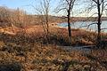Gfp-wisconsin-pike-lake-state-park-lake-through-trees.jpg