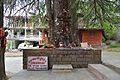 Ghatothkach Shrine - Manali 2014-05-11 2717.JPG