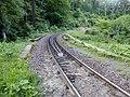 Gleise Harzquerbahn Steinerne Renne Richtung Bielsteinchaussee.jpg