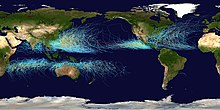 Global map of cyclone tracks