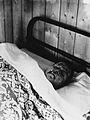 Gloucester smallpox epidemic, 1896; William Clutterbuck Wellcome V0031466.jpg
