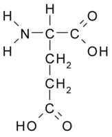 Glutamic Acid.png
