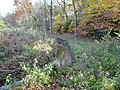Godley Brook - geograph.org.uk - 1036564.jpg