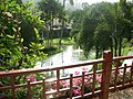 Good maintained beautiful courtyard of Katathani Beach Resort Phuket - panoramio.jpg