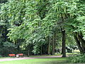 Grüneburgpark, Frankfurt - DSC01573.JPG