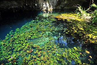 Sistema Sac Actun Flooded cave system in the Yucatan Peninsula, Mexico