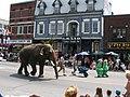Grand Elephant (1056797548).jpg