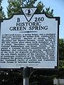 Green-spring024.JPG