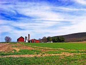 Greene Township, Clinton County, Pennsylvania - A farm in Greene Township