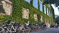 Groene gevel gemeentehuis Aarhus (31483767907).jpg