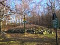 Hügelgrab bei Sachsendorf.jpg