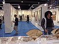 HKCEC 香港會議展覽中心 Wan Chai 蘇富比 Sotheby's pre-Auction exhibition visitors March 2019 SSG 90.jpg