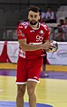 Handball-WM-Qualifikation AUT-BLR 033.jpg