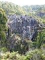 Hanging coffins, Sagada (3302485795).jpg