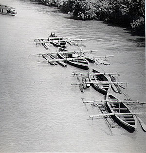 Economy of Suriname - Hardwood logs transported down river, 1955