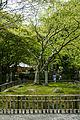Hasedera Sakurai Nara pref39n4272.jpg