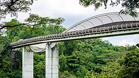 Henderson Wave Bridge (I).jpg