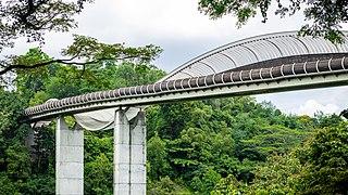 Henderson Wave Bridge (I).jpg