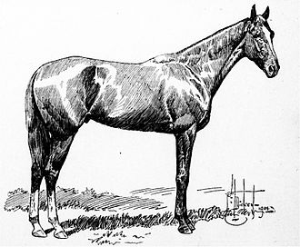 1901 Kentucky Derby - 1901 Kentucky Derby winner His Eminence