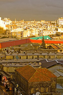 Homs roof tops.jpg