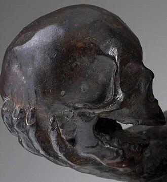 Affe mit Schädel - Image: Hugo Rheinhold Ape With Skull.Darwin Monkey.5