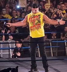 Hulk Hogan sesso gay