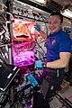 ISS-61 Andrew Morgan waters Mizuna mustard greens.jpg