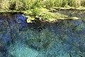 Ichetucknee Springs State Park Blue Hole Spring 7.jpg