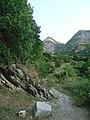 Ilisu State Reserve-3.jpg