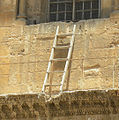 Immovable Ladder CotHS.jpg
