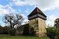 Incintă fortificată cu două turnuri.jpg