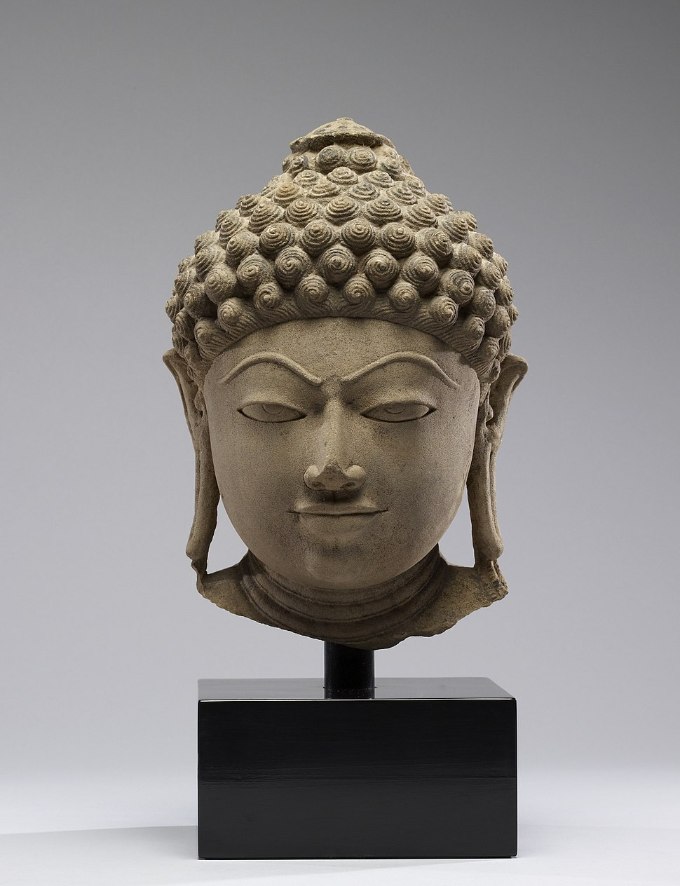 Indian - Head of a Jain Tirthankara - Walters 25262