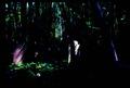 Inner dark-lights.tif