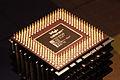 Intel Celeron 500.jpg