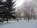 Irkutsk. Akademgorodok. February 2013 - panoramio (149).jpg