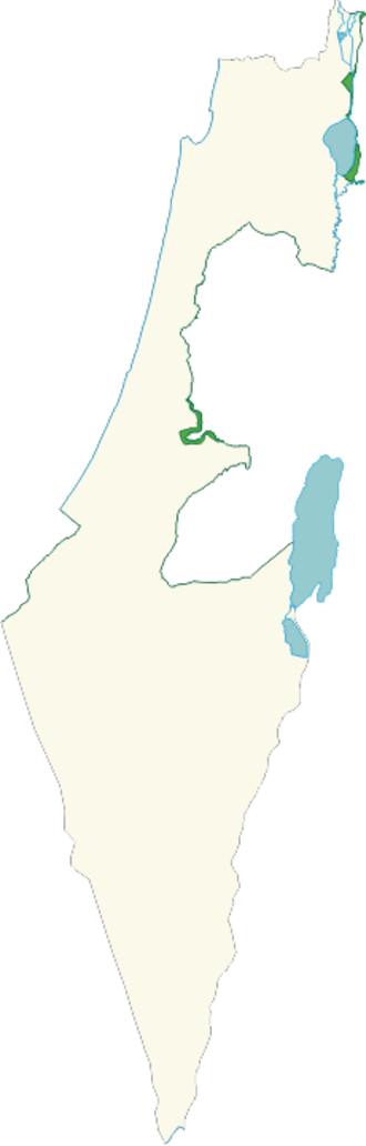 Green Line (Israel) - Israel's 1949 Green Line (dark green) and demilitarized zones (light green)