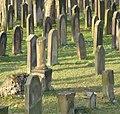 Jüdischer Friedhof - panoramio (2).jpg