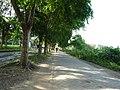 Jalan ke Perum Taman Cikande - panoramio.jpg