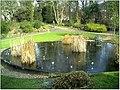 January Frost Botanic Garden Freiburg - Master Botany Photography 2014 - panoramio (10).jpg