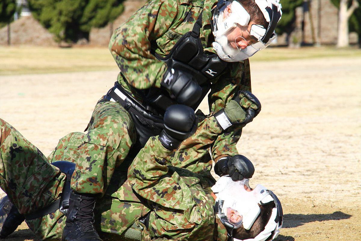 自衛隊格闘術 - Wikipedia