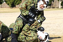 Japan Ground Self-Defense Force Combatives Training.jpg
