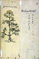 Japanese Herbal, 17th century Wellcome L0030103.jpg