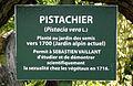 Jardin alpin Jardin des plantes Muséum cartel Pistachier 22 avril 2011.jpg