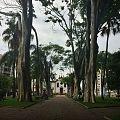 Jardins da Praça de Campo Belo .jpg