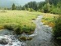 Jazierce- vodný zdroj - panoramio.jpg